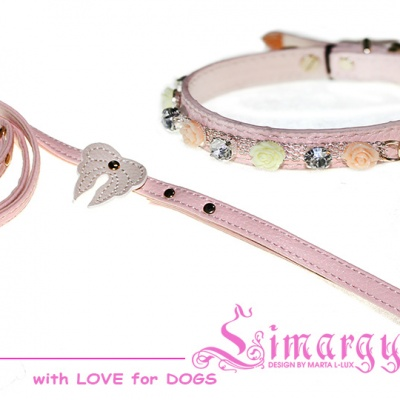 Lim020015 Set 'Wings-2' pink(collar, leash)